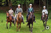 Horseback riding at Tasman Horse Rides